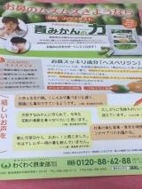 【花粉症対策】青みかんの力★サプリメントの画像(2枚目)