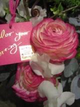 「花・花・花 花がいっぱい♪ FLOWER VALENTINE with J-WAVE」の画像(1枚目)