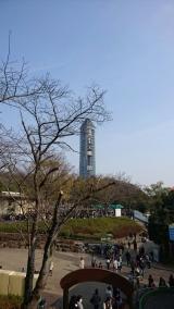 東山動物園の画像(1枚目)