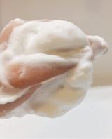 「〜然〜毛穴よりも小さい超微細パウダーで洗顔♪」の画像(14枚目)