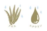 「陶器のような肌へ。白陶泥洗顔石鹸」の画像(6枚目)