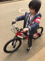D-Bike MASTER(ディーバイクマスター)で自転車練習中の画像(2枚目)