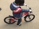 D-Bike MASTER(ディーバイクマスター)で自転車練習中の画像(3枚目)