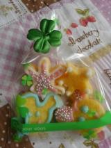 口コミ:ホワイトデーに簡単にアイシングクッキー作り☆の画像(2枚目)