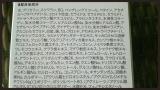 「☆シワやたるみに効く!オールインワンクリーム☆」の画像(3枚目)