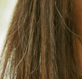 SNSで話題の生ハチミツシャンプーで、うるツヤ春髪に!ハニープラス♪の画像(8枚目)