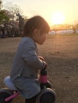 娘の成長の画像(5枚目)
