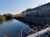 「   淡路島で野池巡り 」の画像(5枚目)