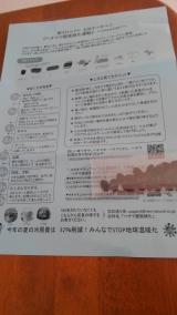 へちまで緑化計画(^^♪の画像(1枚目)