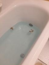 「とれるNo. 1洗顔パウダーでお風呂の洗剤一本化♪」の画像(10枚目)