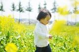 (カメラ必須!!)息子と菜の花畑へ行ってきました。&私のピンボケ対策の画像(2枚目)