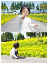 (カメラ必須!!)息子と菜の花畑へ行ってきました。&私のピンボケ対策の画像(4枚目)