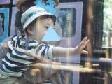 「生まれて初めての動物園」の画像(2枚目)