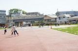 「お気に入りの公園」の画像(5枚目)