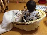 口コミ記事「リビングでの次男の居場所確保のためにベビーバスケット導入(長男1歳11ヶ月・次男生後1ヶ月)」の画像