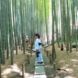 着物をレンタルして鎌倉観光♡混んでいてもゆっくりできるスポットをご紹介!の画像(2枚目)