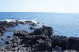 「海の精 の天然海塩 で、体に優しい&美味しい おにぎりパーティー♪」の画像(4枚目)