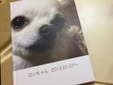 「お気に入りの写真をフォトグッズに♡seal stand」の画像(1枚目)