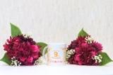 「♡ モニプラ ファンブログ 9周年記念 ♡」の画像(2枚目)