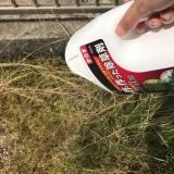 子供やペットがいても安心!お酢で作った除草剤の画像(4枚目)