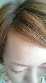 「話題のワサビ葉&カモミル 頭皮ケア」の画像(2枚目)
