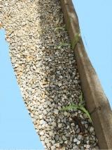 「お酢で作った除草剤 2L」の画像(3枚目)