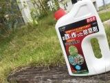 「★モニタ当選★お酢で作った除草剤」の画像(1枚目)