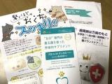 世界特許の口腔善玉菌が、歯磨き苦手な我が家のワンコに最適!の画像(2枚目)