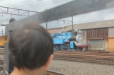 大井川鐵道トーマス(ジェームス)に乗ってきましたの画像(5枚目)