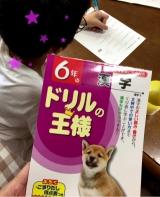 口コミ記事「息子氏、夏休みも中盤だが漢字ドリルはどのくらい進んだかな?…の巻(´∀`)」の画像