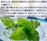 藍の青汁♡の画像(2枚目)