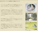 ガミラシークレットの画像(6枚目)