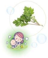 「★アトピタ 保湿頭皮シャンプー★」の画像(11枚目)