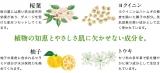 日本酒酵母×乳酸菌『プモアクリーム』の画像(11枚目)