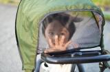 2歳からはベビーカー代わりにアイデス「カンガルー」!日常使いにもフィットするお洒落な三輪車【PR】の画像(3枚目)