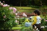 アイデス「カンガルー」で秋のレジャー*東沢バラ公園に行ってきましたの画像(5枚目)