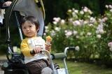 アイデス「カンガルー」で秋のレジャー*東沢バラ公園に行ってきましたの画像(6枚目)