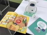 「   AI(人工知能)搭載ロボットで英語学習♪「Musio X」座談会 」の画像(4枚目)