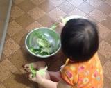お野菜まる でチャチャッと白菜そぼろあんの画像(3枚目)