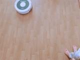 「主婦の味方。我が家にロボット掃除機がやってきた!」の画像(2枚目)