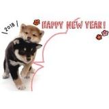 「   [年賀状] 2018年は戌年!可愛すぎるサンリオ年賀状をチェックして☆(今年も残り約2ヶ月っ!) 」の画像(299枚目)