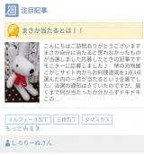「祝!!ブログ村注目記事ランキング1位(*^-^*) 【堺の刃物屋さんこかじ】」の画像(1枚目)
