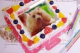 #Cakejp でオリジナルデコレーションケーキ♡   の画像(8枚目)