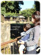 「   *動物園で♪ドクターレーベル ベビーキャリア* 」の画像(2枚目)
