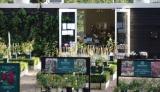 イングリッシュローズ・ガーデン 2017秋の画像(9枚目)