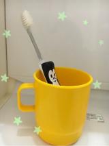 歯磨き習慣の画像(1枚目)
