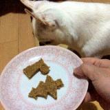 「総合栄養食で作る【Nanaパウダータイプ】簡単手作りごはん♪☆」の画像(8枚目)