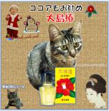 「つばき~ゆ☆誕生8周年!応援メッセージの投稿で大島椿スペシャルBOXプレゼント」の画像(1枚目)