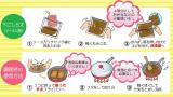 ラクめし  豚丼の素で時短 の画像(2枚目)
