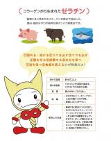 モニター★ニューシルバー&クールアガーの画像(2枚目)